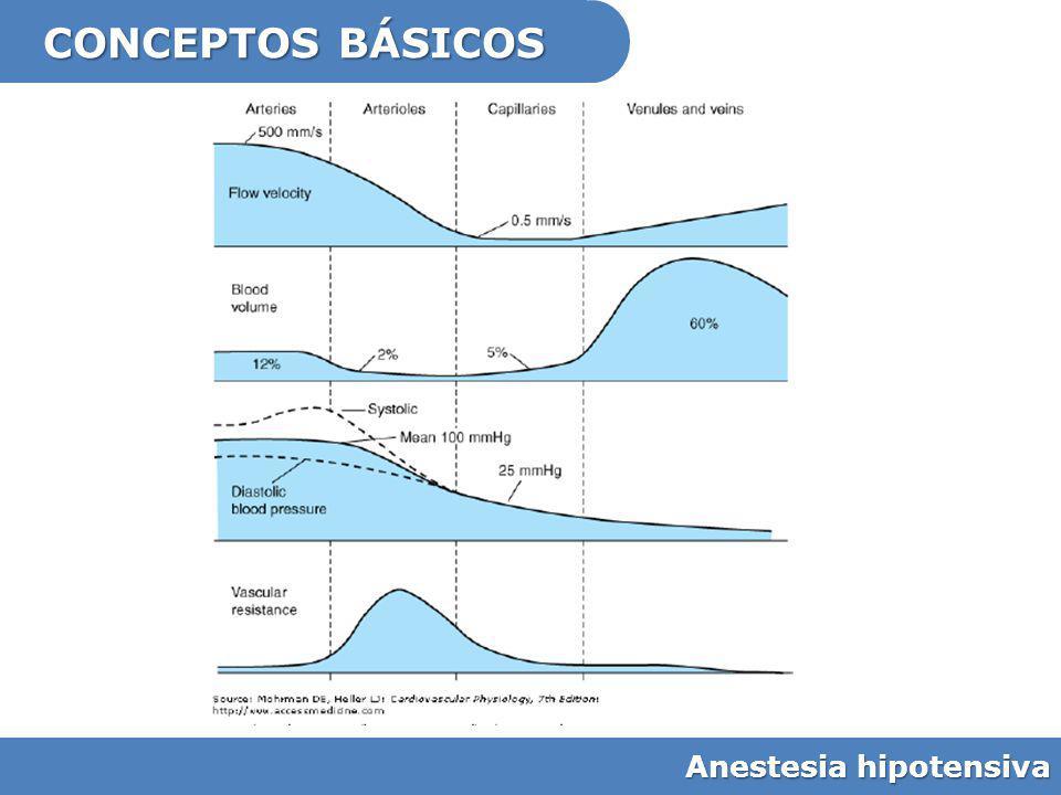 Mejorar el campo quirúrgico Anestesia hipotensiva Pocos estudios No criterios claros de hipotensión Valoración de visibilidad subjetiva Útil para – Cx endoscópica de SPN – Osteotomía mandibular – Timpanoplastia