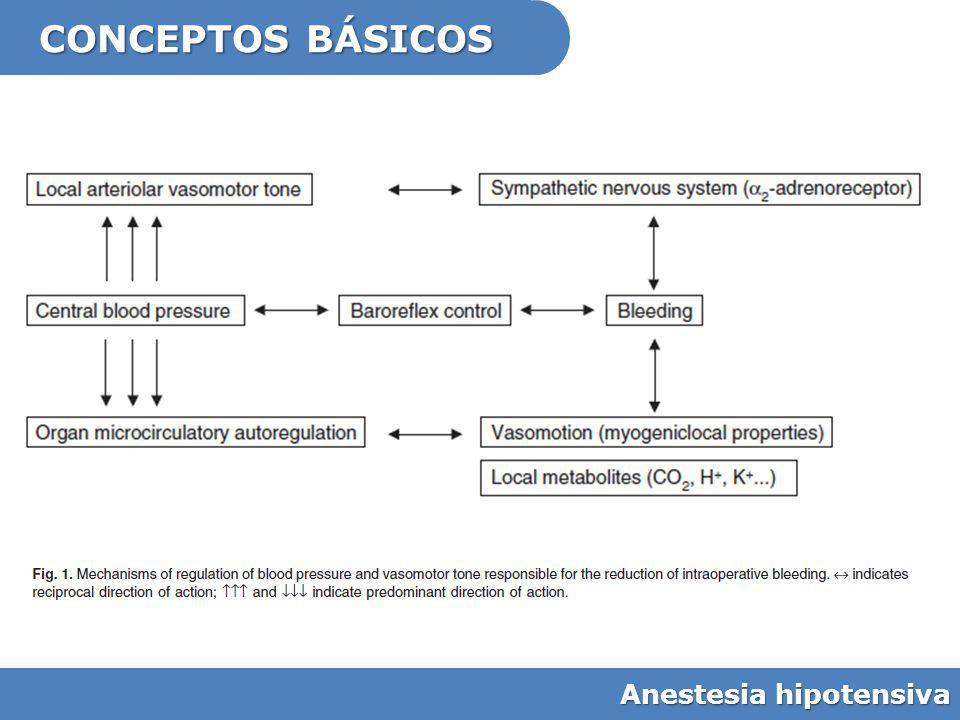CONCEPTOS BÁSICOS Anestesia hipotensiva