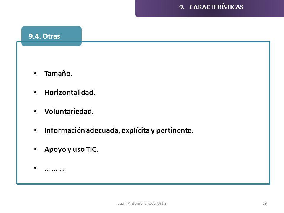 Juan Antonio Ojeda Ortiz29 Tamaño. Horizontalidad. Voluntariedad. Información adecuada, explícita y pertinente. Apoyo y uso TIC. … … … 9.4. Otras 9. C