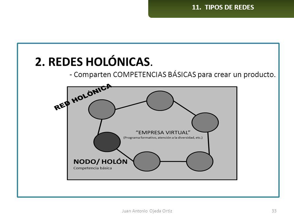 Juan Antonio Ojeda Ortiz33 2. REDES HOLÓNICAS. - Comparten COMPETENCIAS BÁSICAS para crear un producto. 11. TIPOS DE REDES