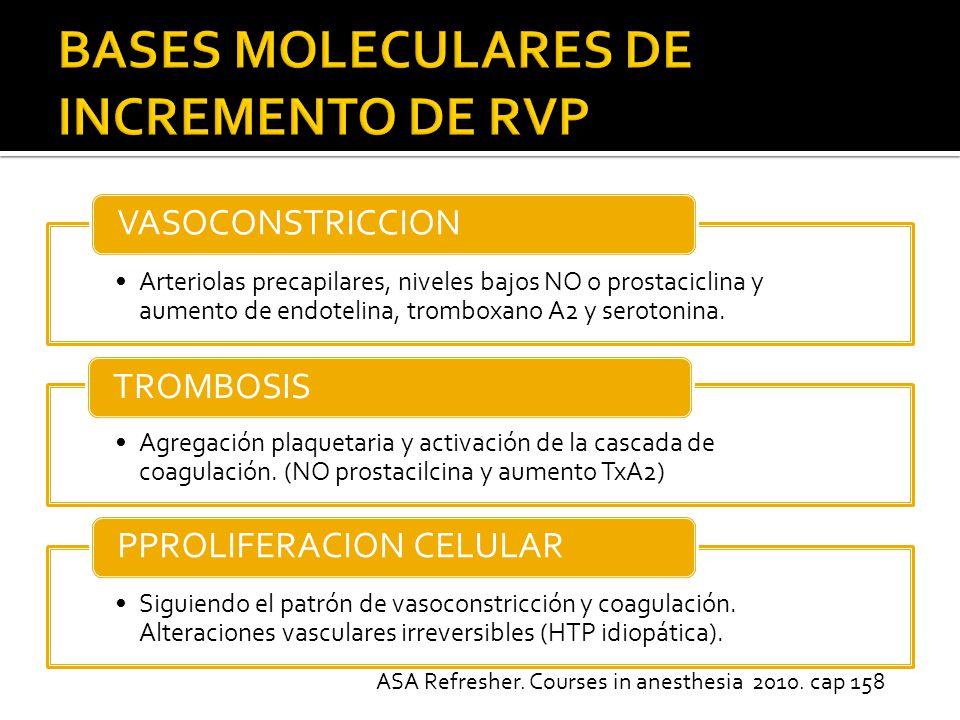Arteriolas precapilares, niveles bajos NO o prostaciclina y aumento de endotelina, tromboxano A2 y serotonina.