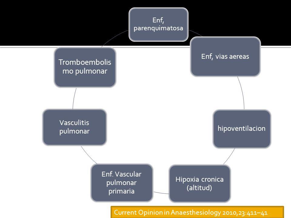 Enf, parenquimatosa Enf, vias aereas hipoventilacion Hipoxia cronica (altitud) Enf.