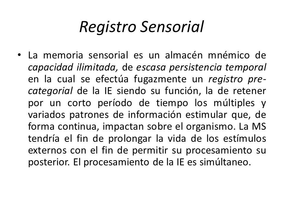 Registro Sensorial La memoria sensorial es un almacén mnémico de capacidad ilimitada, de escasa persistencia temporal en la cual se efectúa fugazmente