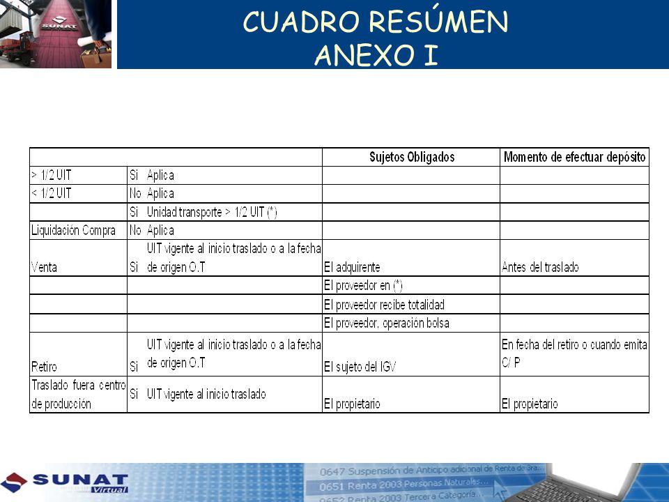 CUADRO RESÚMEN ANEXO I