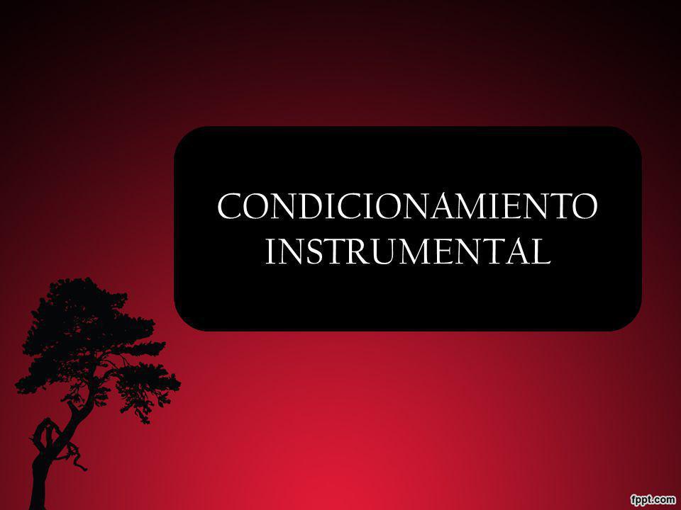CONDICIONAMIENTO INSTRUMENTAL