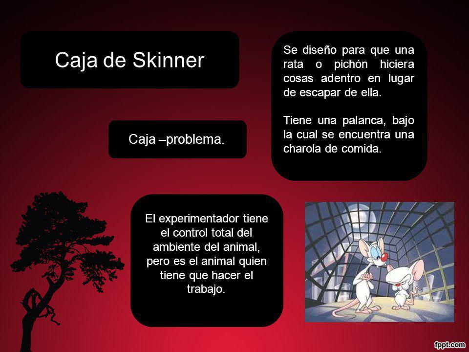 Caja de Skinner Se diseño para que una rata o pichón hiciera cosas adentro en lugar de escapar de ella. Tiene una palanca, bajo la cual se encuentra u