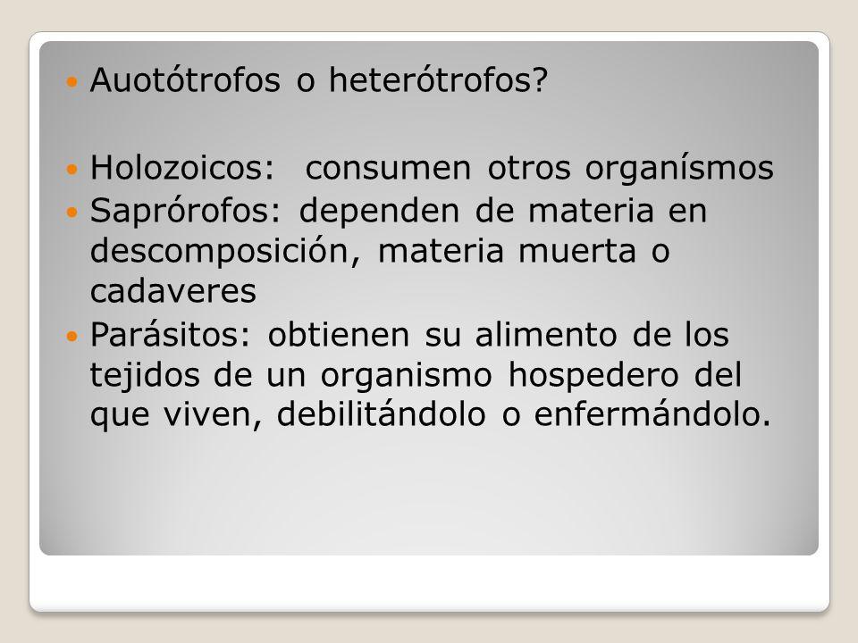 Auotótrofos o heterótrofos.