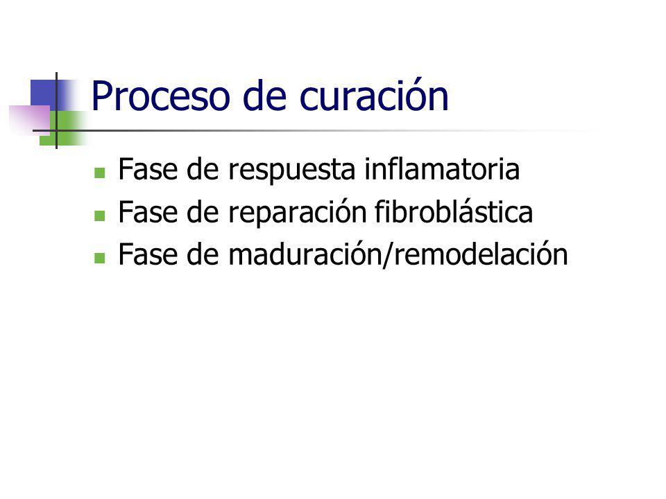 Proceso de curación Fase de respuesta inflamatoria Fase de reparación fibroblástica Fase de maduración/remodelación