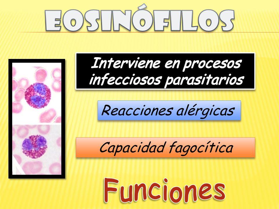 Reacciones alérgicas Capacidad fagocítica