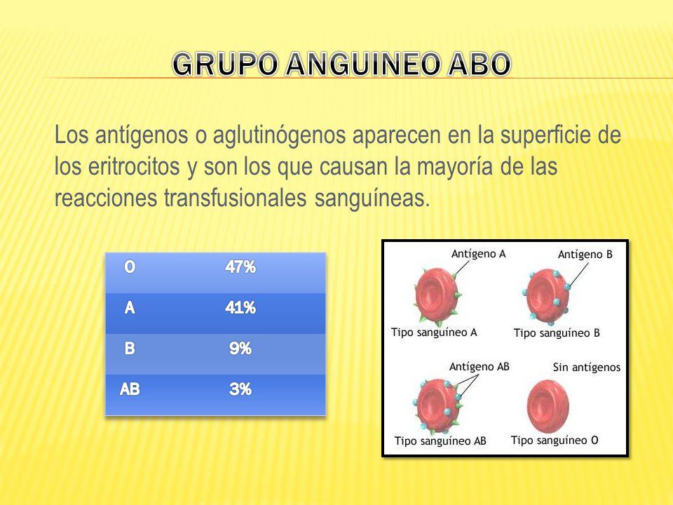 Los antígenos o aglutinógenos aparecen en la superficie de los eritrocitos y son los que causan la mayoría de las reacciones transfusionales sanguínea