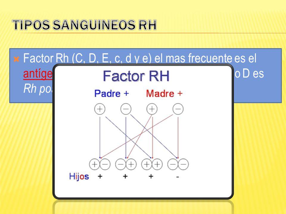 Factor Rh (C, D, E, c, d y e) el mas frecuente es el antígeno D. Si una persona posee un antígeno D es Rh positivo, si no lo posee es Rh negativo