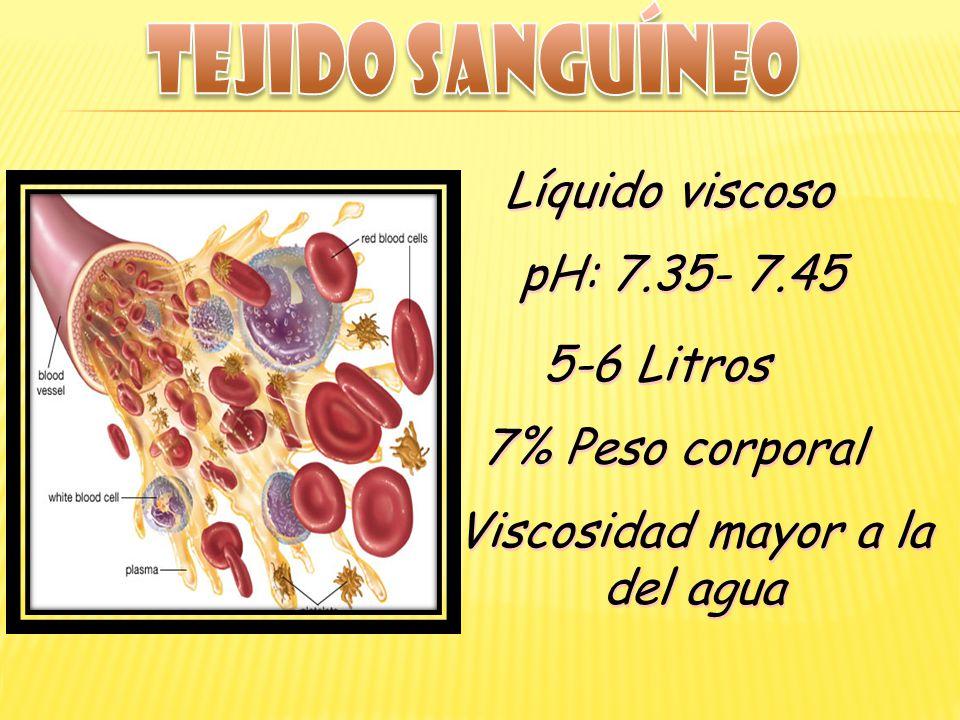 Líquido viscoso pH: 7.35- 7.45 5-6 Litros 7% Peso corporal Viscosidad mayor a la del agua