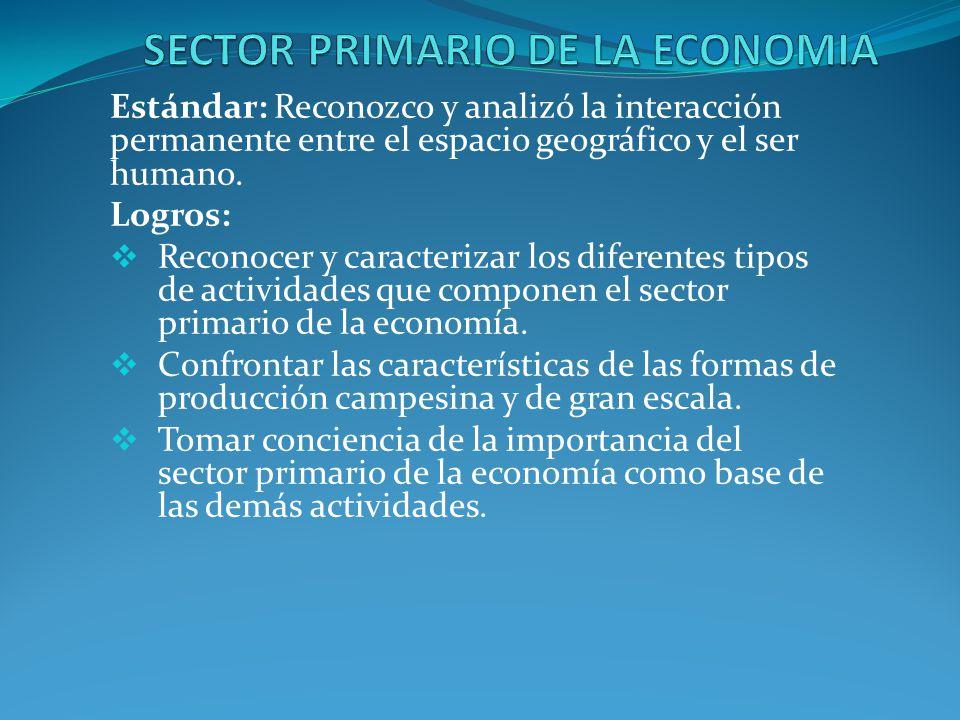Sector primario.