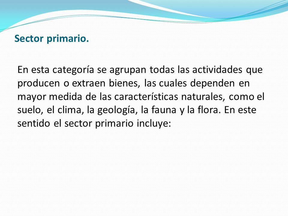 Sector primario. En esta categoría se agrupan todas las actividades que producen o extraen bienes, las cuales dependen en mayor medida de las caracter