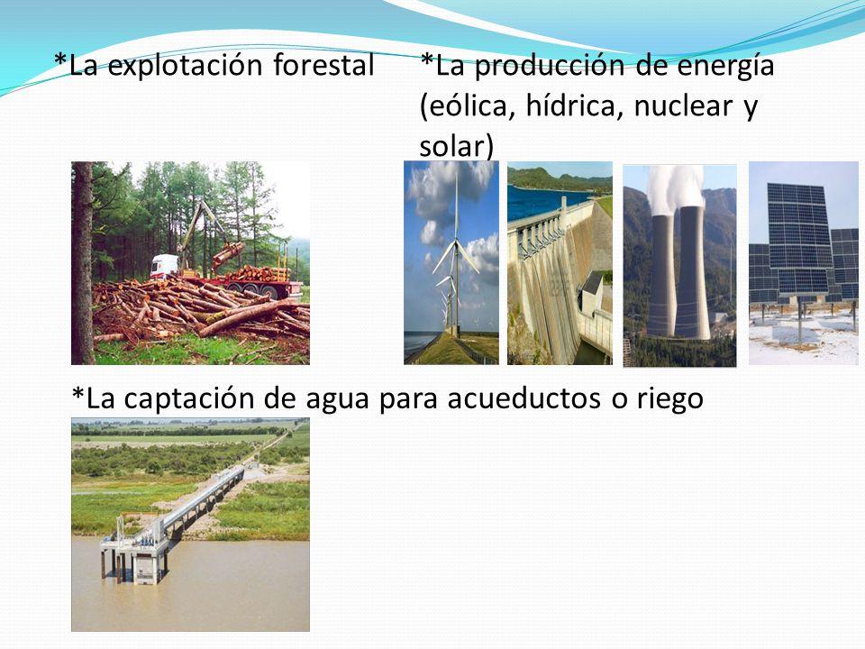 *La explotación forestal*La producción de energía (eólica, hídrica, nuclear y solar) * La captación de agua para acueductos o riego