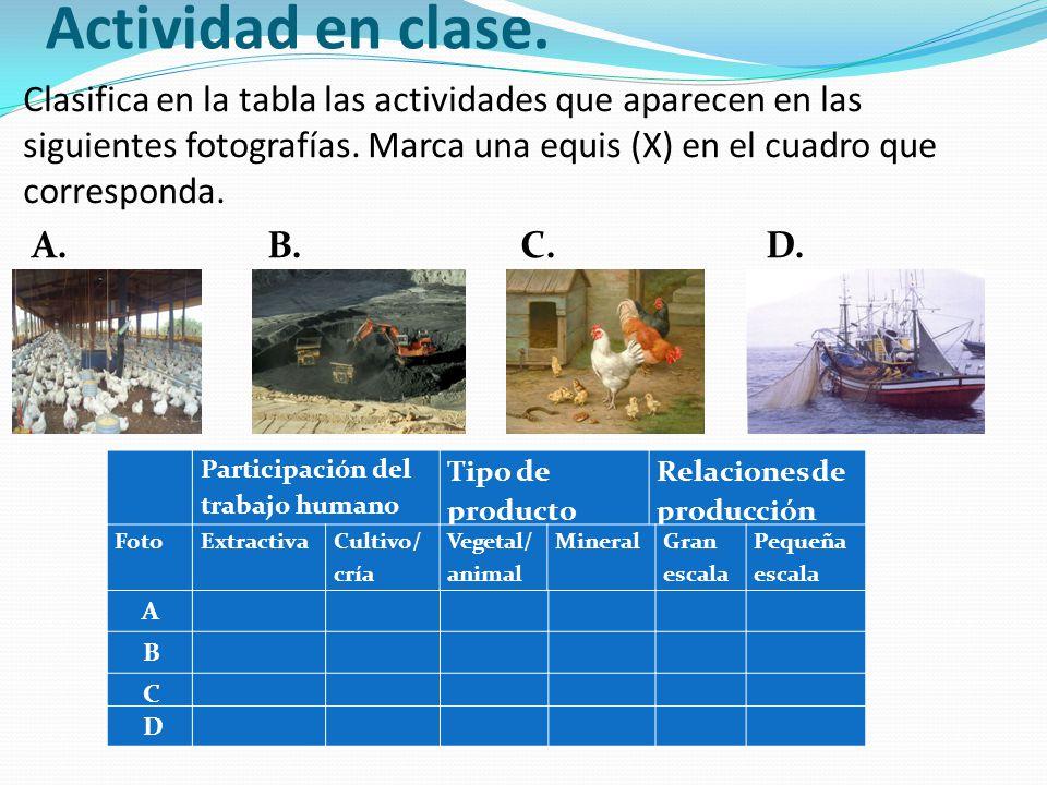 Actividad en clase. Clasifica en la tabla las actividades que aparecen en las siguientes fotografías. Marca una equis (X) en el cuadro que corresponda