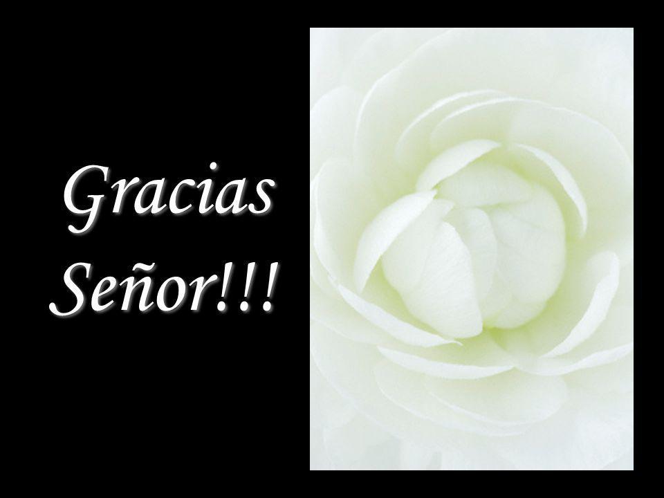 Gracias Señor!!! Gracias Señor!!!