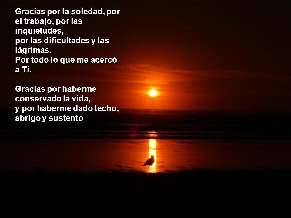 Gracias por la soledad, por el trabajo, por las inquietudes, por las dificultades y las lágrimas.
