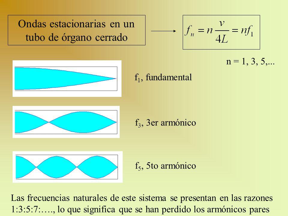 Ondas estacionarias en un tubo de órgano cerrado f 1, fundamental f 3, 3er armónico f 5, 5to armónico n = 1, 3, 5,... Las frecuencias naturales de est