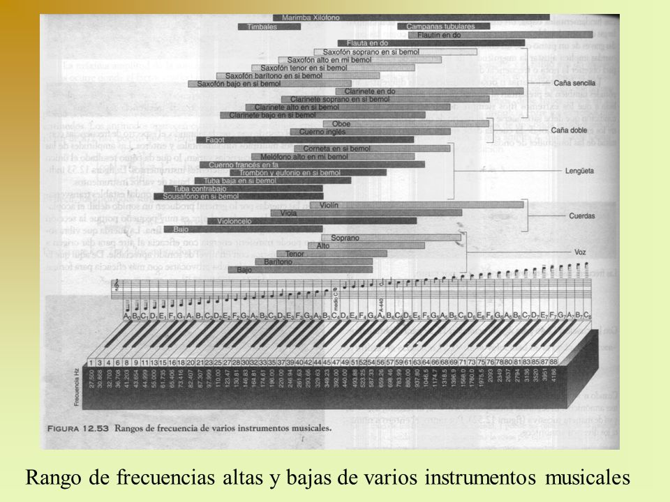 Ondas estacionarias en un tubo de órgano cerrado f 1, fundamental f 3, 3er armónico f 5, 5to armónico n = 1, 3, 5,...