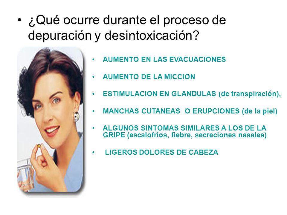 ¿Qué ocurre durante el proceso de depuración y desintoxicación? AUMENTO EN LAS EVACUACIONES AUMENTO DE LA MICCION ESTIMULACION EN GLANDULAS (de transp