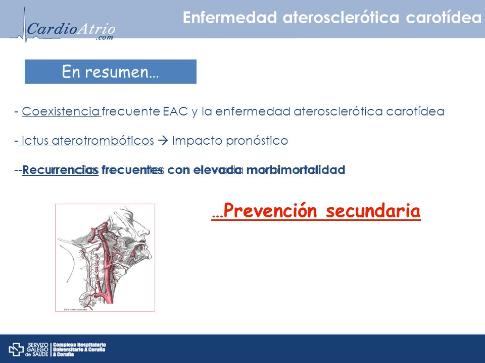 En resumen… - Coexistencia frecuente EAC y la enfermedad aterosclerótica carotídea - Ictus aterotrombóticos impacto pronóstico - Recurrencias frecuent