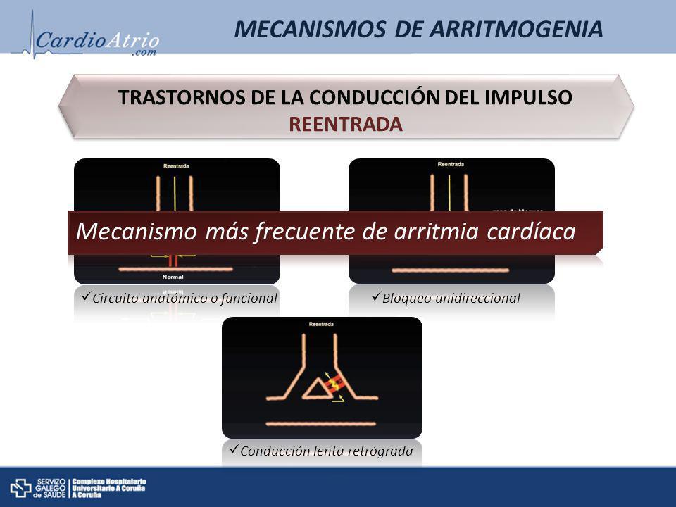 MECANISMOS DE ARRITMOGENIA TRASTORNOS DE LA CONDUCCIÓN DEL IMPULSO REENTRADA Circuito anatómico o funcional Bloqueo unidireccional Conducción lenta re