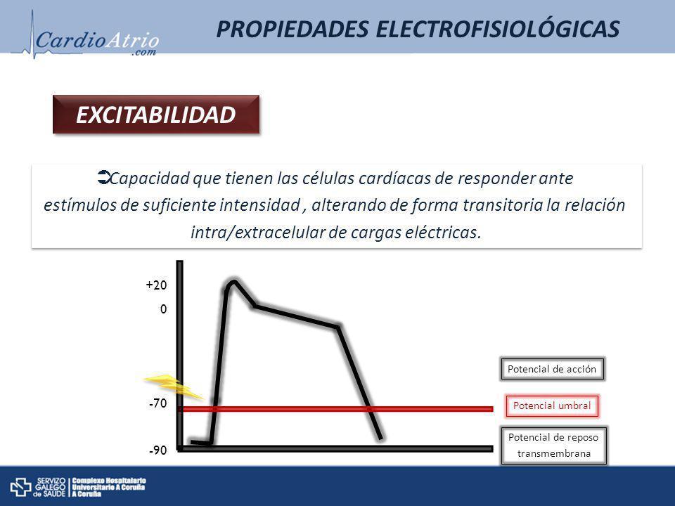PROPIEDADES ELECTROFISIOLÓGICAS POTENCIAL DE REPOSO TRANSMEMBRANA Diferencia de potencial entre el interior y el exterior de la célula en reposo.