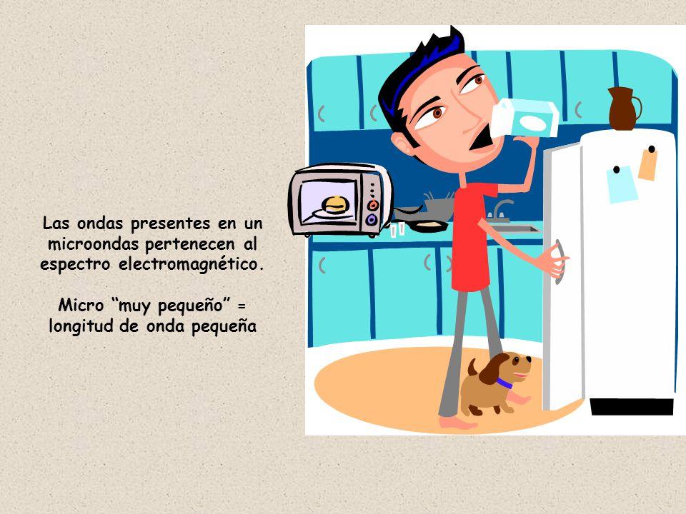 Sin embargo hay un gran misterio que tiene el horno para calentar los alimentos, cual será