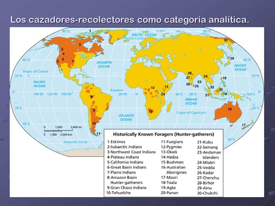 Los cazadores-recolectores como categoría analítica.