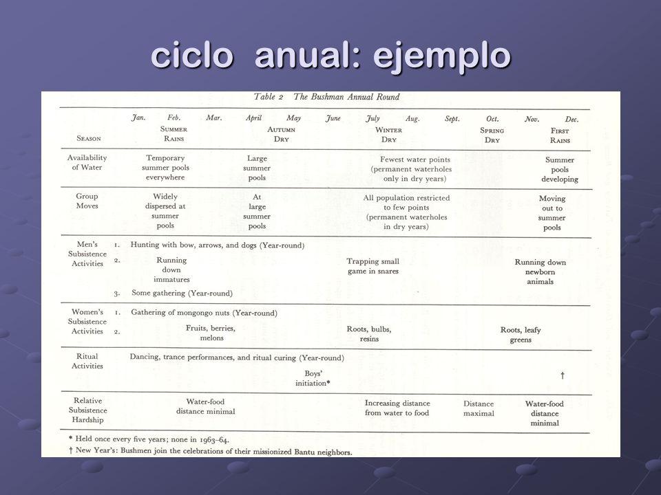 ciclo anual: ejemplo