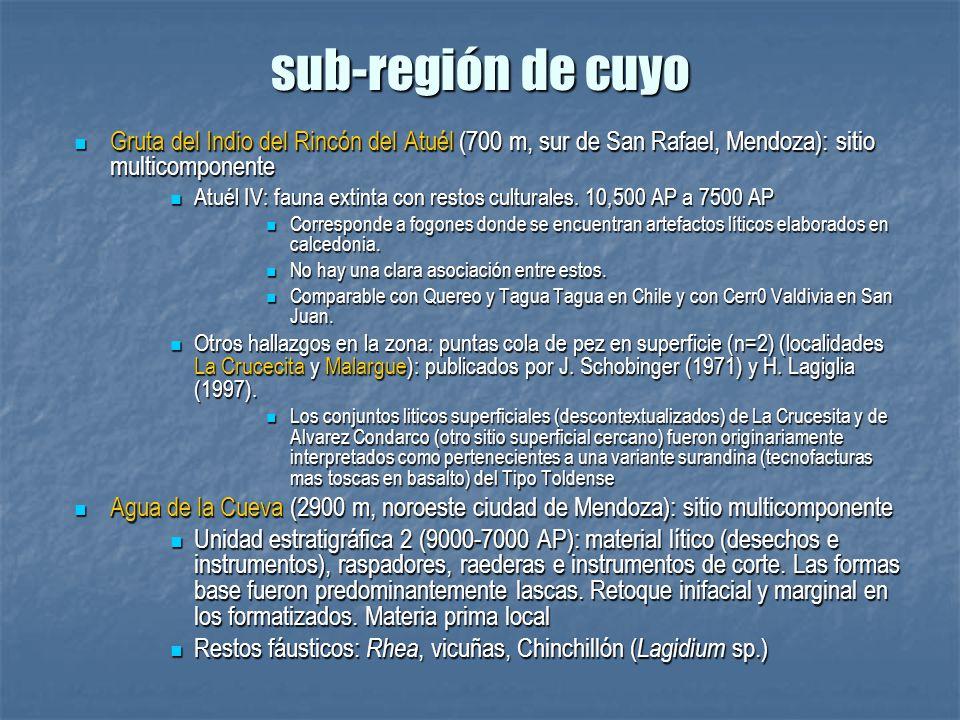 sub-región de cuyo Gruta del Indio del Rincón del Atuél (700 m, sur de San Rafael, Mendoza): sitio multicomponente Gruta del Indio del Rincón del Atué