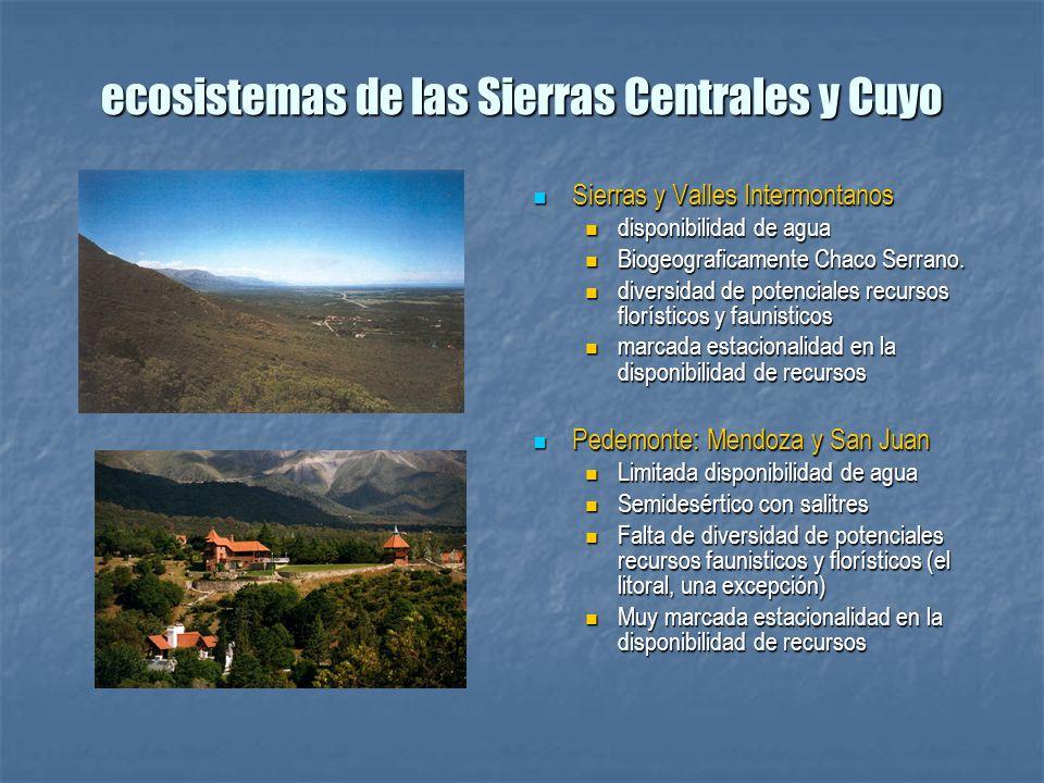ecosistemas de las Sierras Centrales y Cuyo Sierras y Valles Intermontanos Sierras y Valles Intermontanos disponibilidad de agua Biogeograficamente Ch