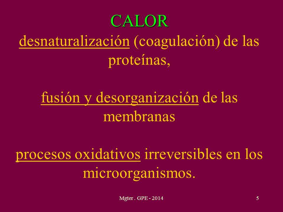CALOR CALOR desnaturalización (coagulación) de las proteínas, fusión y desorganización de las membranas procesos oxidativos irreversibles en los micro
