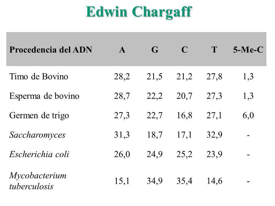 Edwin Chargaff Procedencia del ADNAGCT5-Me-C Timo de Bovino28,221,521,227,81,3 Esperma de bovino28,722,220,727,31,3 Germen de trigo27,322,716,827,16,0