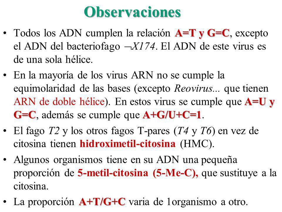 A=T y G=CTodos los ADN cumplen la relación A=T y G=C, excepto el ADN del bacteriofago X174. El ADN de este virus es de una sola hélice. A=U y G=CA+G/U