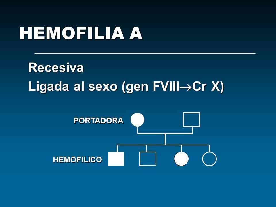 Recesiva Ligada al sexo (gen FVIII Cr X) PORTADORA HEMOFILIA A HEMOFILICO