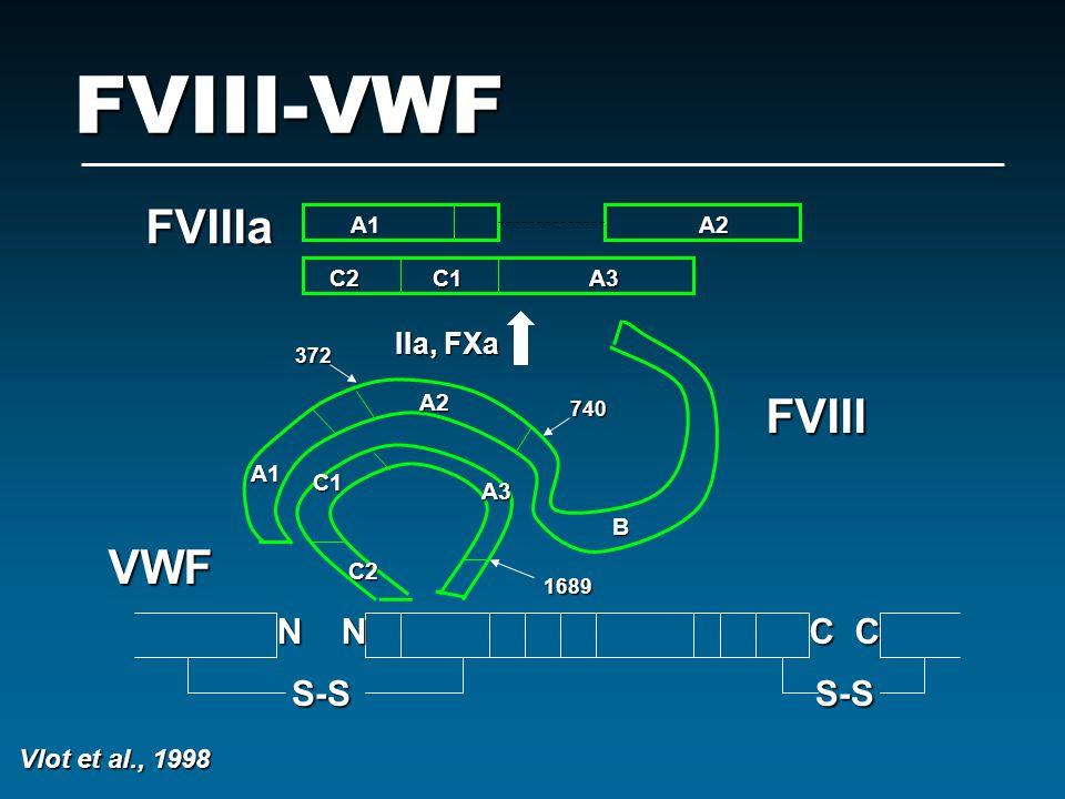 FVIII-VWF S-SS-S VWF FVIII FVIIIa IIa, FXa A1 A2 C2 C1 A3 N N C C 1689 740 372 A1 A2 A3 C1 C2 B Vlot et al., 1998