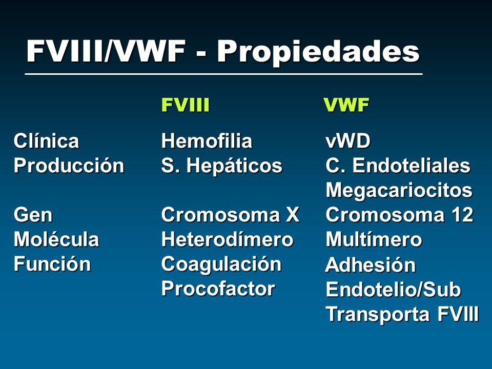 FVIII/VWF - Propiedades FVIII VWF ClínicaHemofilia vWD ProducciónS. Hepáticos C. Endoteliales Megacariocitos Megacariocitos GenCromosoma X Cromosoma 1