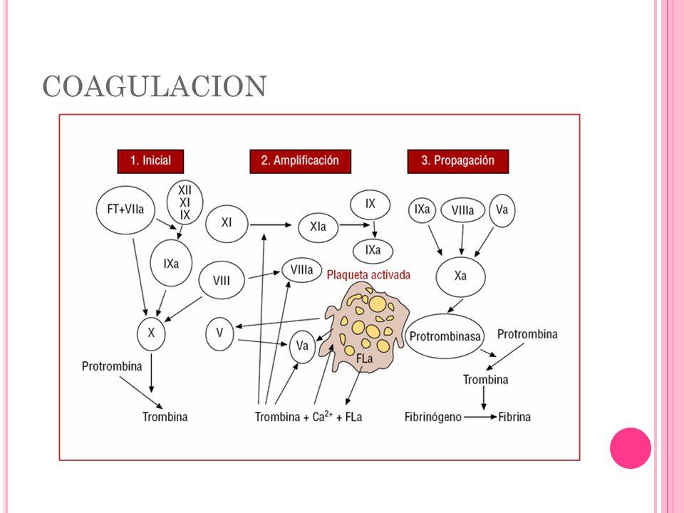 MONITOREO COAGULACION PT Factores VIII, 1X y X.