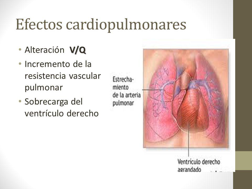 Efectos cardiopulmonares V/Q Alteración V/Q Incremento de la resistencia vascular pulmonar Sobrecarga del ventrículo derecho