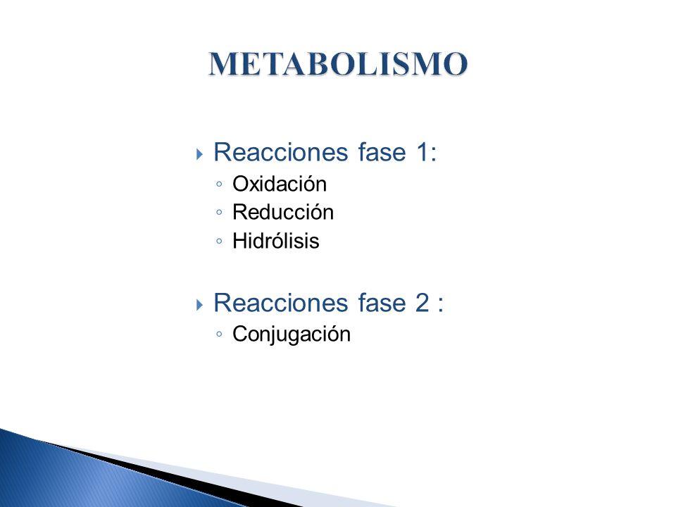 Reacciones fase 1: Oxidación Reducción Hidrólisis Reacciones fase 2 : Conjugación