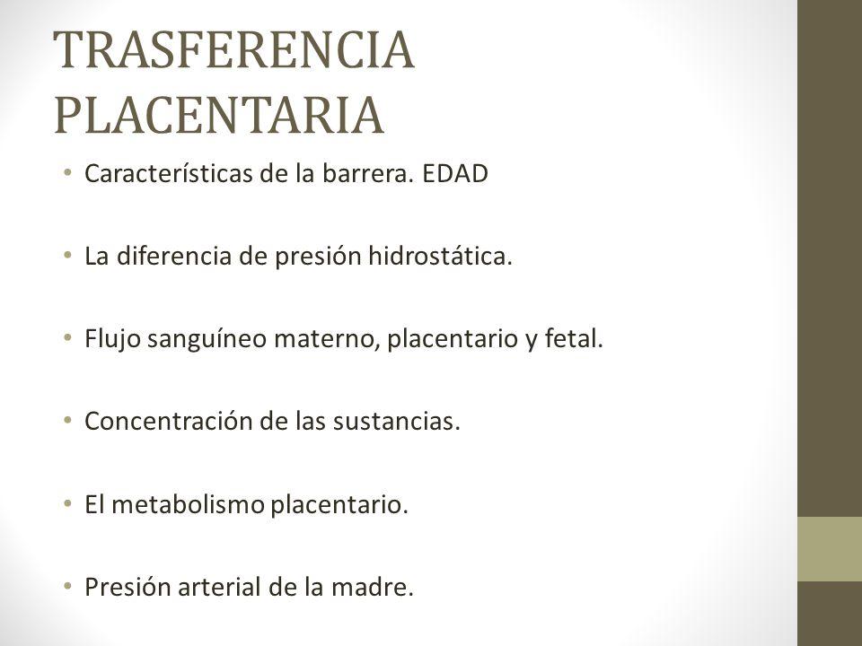TRASFERENCIA PLACENTARIA Características de la barrera. EDAD La diferencia de presión hidrostática. Flujo sanguíneo materno, placentario y fetal. Conc