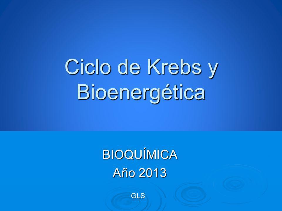 Ciclo de Krebs y Bioenergética BIOQUÍMICA Año 2013 GLS