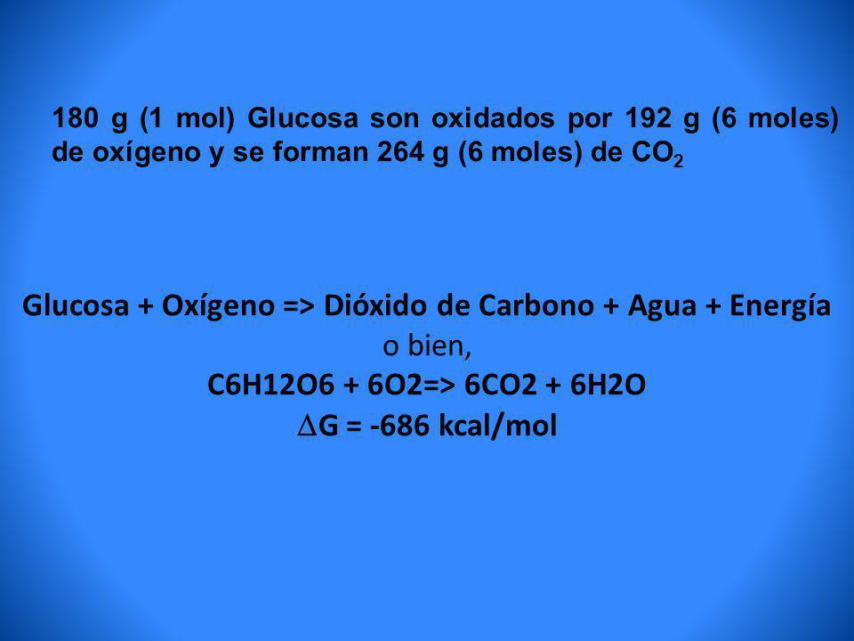 Glucosa + Oxígeno => Dióxido de Carbono + Agua + Energía o bien, C6H12O6 + 6O2=> 6CO2 + 6H2O G = -686 kcal/mol 180 g (1 mol) Glucosa son oxidados por