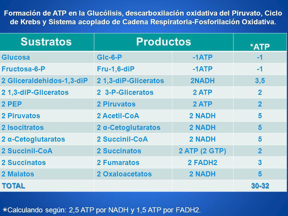 SustratosProductos *ATP GlucosaGlc-6-P-1ATP Fructosa-6-PFru-1,6-diP-1ATP 2 Gliceraldehidos-1,3-diP2 1,3-diP-Gliceratos2NADH3,5 2 1,3-diP-Gliceratos2 3