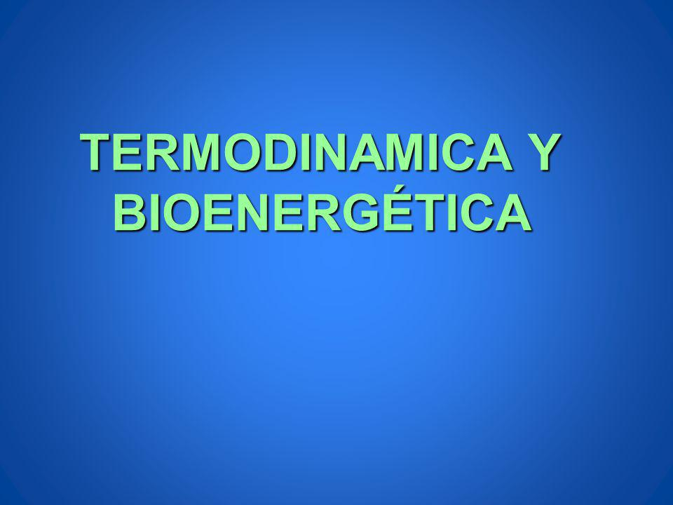 TERMODINAMICA Y BIOENERGÉTICA