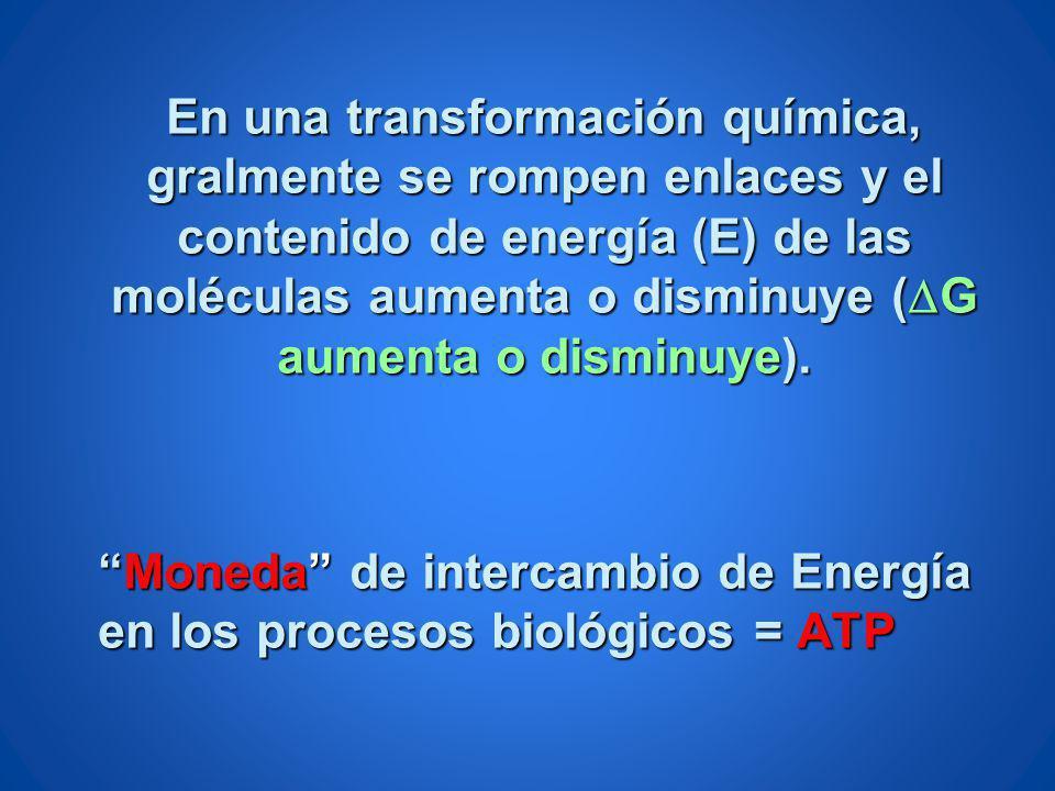 En una transformación química, gralmente se rompen enlaces y el contenido de energía (E) de las moléculas aumenta o disminuye ( G aumenta o disminuye)