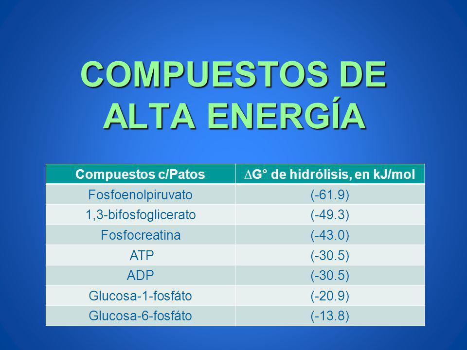 COMPUESTOS DE ALTA ENERGÍA Compuestos c/PatosG° de hidrólisis, en kJ/mol Fosfoenolpiruvato(-61.9) 1,3-bifosfoglicerato(-49.3) Fosfocreatina(-43.0) ATP