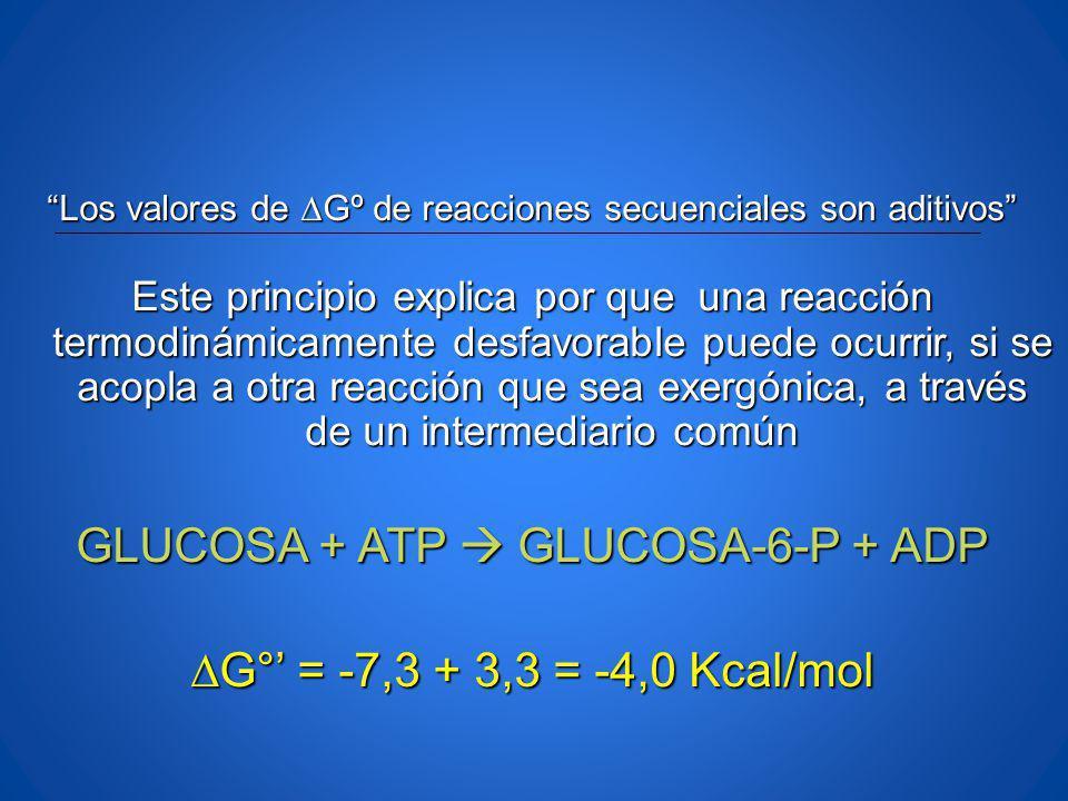 Los valores de Gº de reacciones secuenciales son aditivos Este principio explica por que una reacción termodinámicamente desfavorable puede ocurrir, s